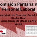 Comisión Paritaria de Personal Laboral del 3 de febrero de 2020