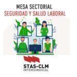 SEGURIDAD Y SALUD LABORAL | Comité Sectorial Extraordinario. Personal de Educación